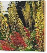 Ligularia And Astilbe Wood Print