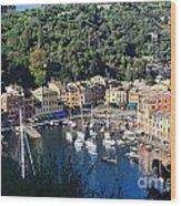 Liguria - Portofino Wood Print