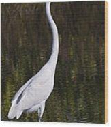 Like A Great Egret Monument Wood Print