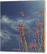 Like Flying Amongst The Clouds Wood Print