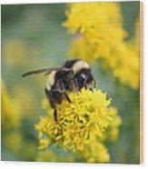 Lil Bee Wood Print