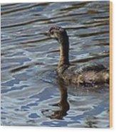 Lil Duck Wood Print by Rhonda Humphreys