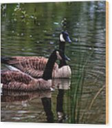 Lila Goose And The King Wood Print