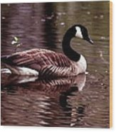 Lila Queen Of The Pond Wood Print