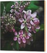Lilac And Crabapple Wood Print
