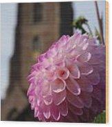 Lilac Dahlia In An English Churchyard Wood Print