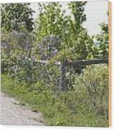 Lilac Fence I Wood Print