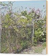 Lilac Fence II Wood Print