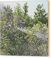 Lilac Fence IIi Wood Print