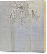 Lilac Flower Wood Print
