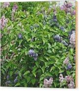 Lilac Heaven Wood Print