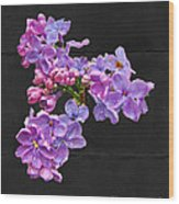 Lilacs - Perfumed Dreams Wood Print