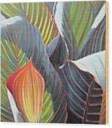 Lilies And Light Wood Print