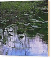 Lilies  Wood Print by Andres LaBrada