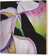 Lilies Wood Print by Debi Starr