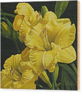 Lilies for Olivia Rose Wood Print