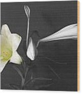 Lilies In Black And White Wood Print