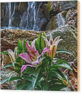 Lilies Of The Falls Wood Print