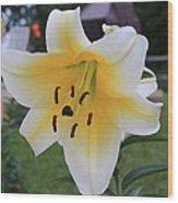 Lilies Pompei Wood Print