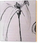 Lilium Observation Wood Print