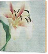 Lilium Wood Print