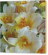 Lilium Regale Wood Print