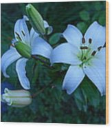 Lillies Wood Print