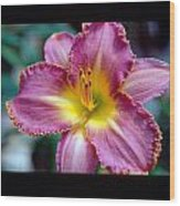 Lilly Blooming Vertical Wood Print