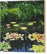 Lilly Garden Wood Print