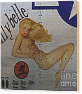 Lillybelle Nose Art Wood Print by Cinema Photography