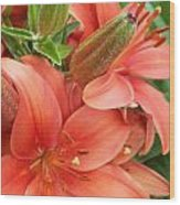 Lillys And Buds 3 Wood Print