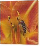 Lily And Bee Wood Print