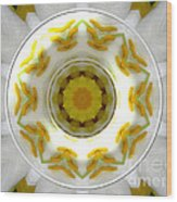 Lily And Daffodil Kaleidoscope Under Glass Wood Print
