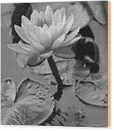 Lily Bw Wood Print