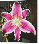 #lily #closeup #pretty #flower Wood Print