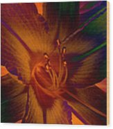 Lily Colors Wood Print