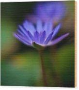 Lily Glow Wood Print