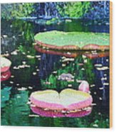 Lily Leaves Painterly  Wood Print