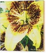 Lily Love Wood Print