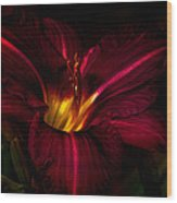 Lily Number Nine Wood Print