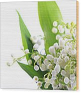 Lily Of The Valley Art Wood Print