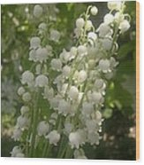 White Lily Of The Valley Bouquet Wood Print