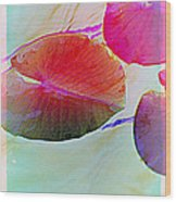Lily Pad 1 Wood Print