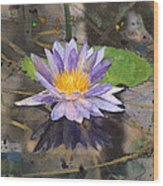 Lily Pad With Purple Flower Wood Print
