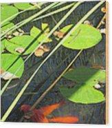 Lily Pads 2 Wood Print