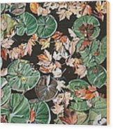 Lily Pads And Leaves Wood Print by Anthony Mezza