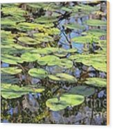 Lily Pads In The Swamp Wood Print