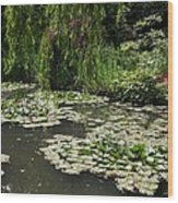 Lily Pads Monets Garden Wood Print