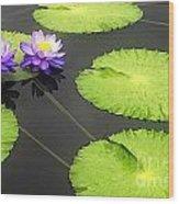 Lily Pads Purple Wood Print