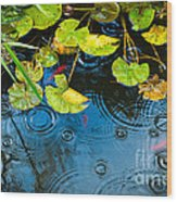 Lily Pads Ripples And Gold Fish Wood Print